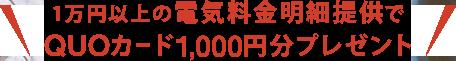 1万円以上の電気料金明細提供でQUOカード1,000円分プレゼント
